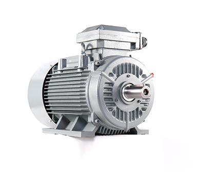 JEM3 JEM4系列低压铸铁壳三相异步电机