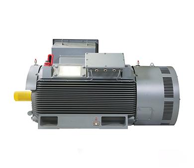 铸铁壳高压三相异步电动机
